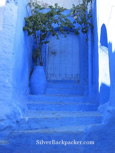 Chefchaouen Door with Vine