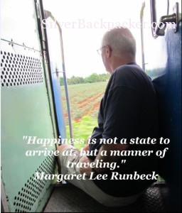 Happiness is not a state to arrive at......