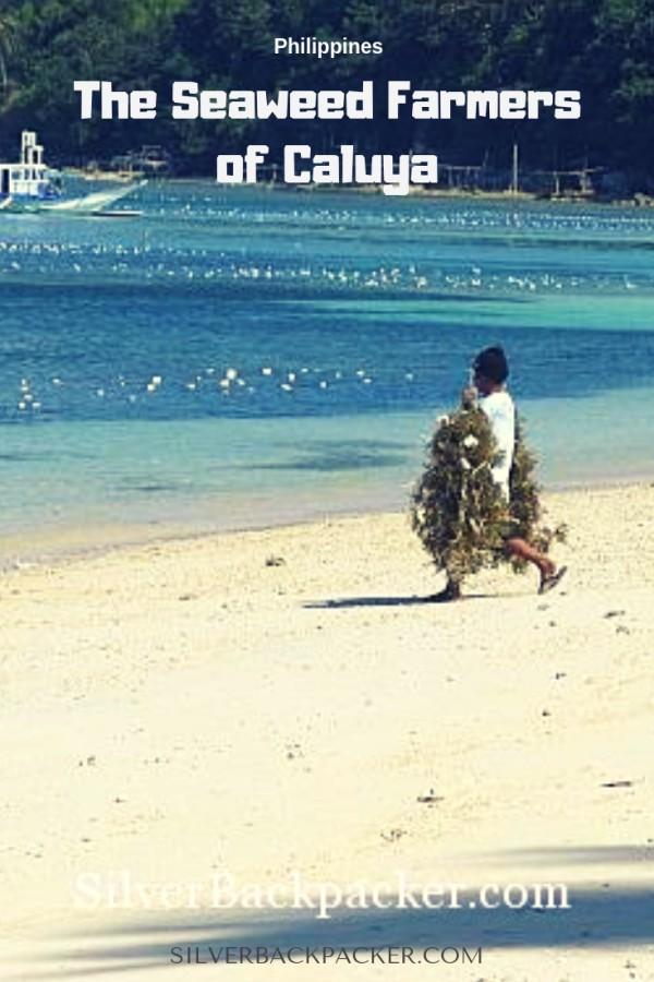 The Seaweed Farmers of Caluya