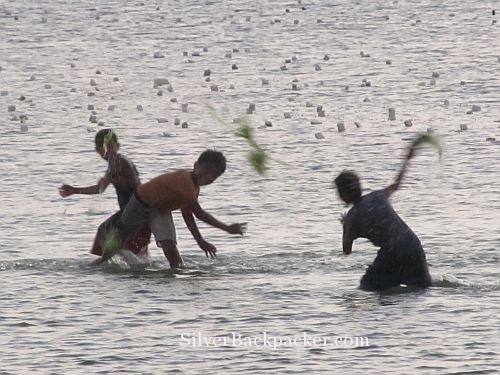 seaweed fun at sunset Caluya
