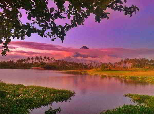 Mayon from gabawan lake