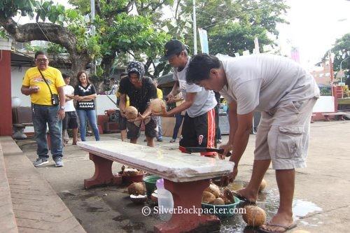 Cracking open coconuts tabak festival 2017