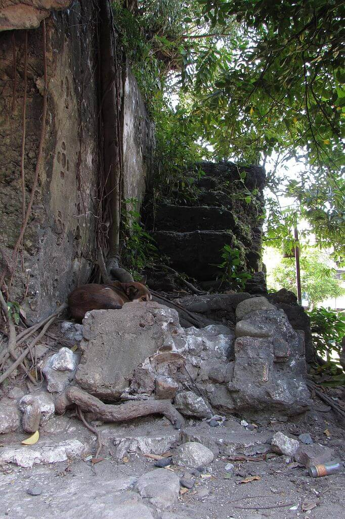 Stone stairs leading to the old bell tower Church of St.Lawrence, Tiwi ruins
