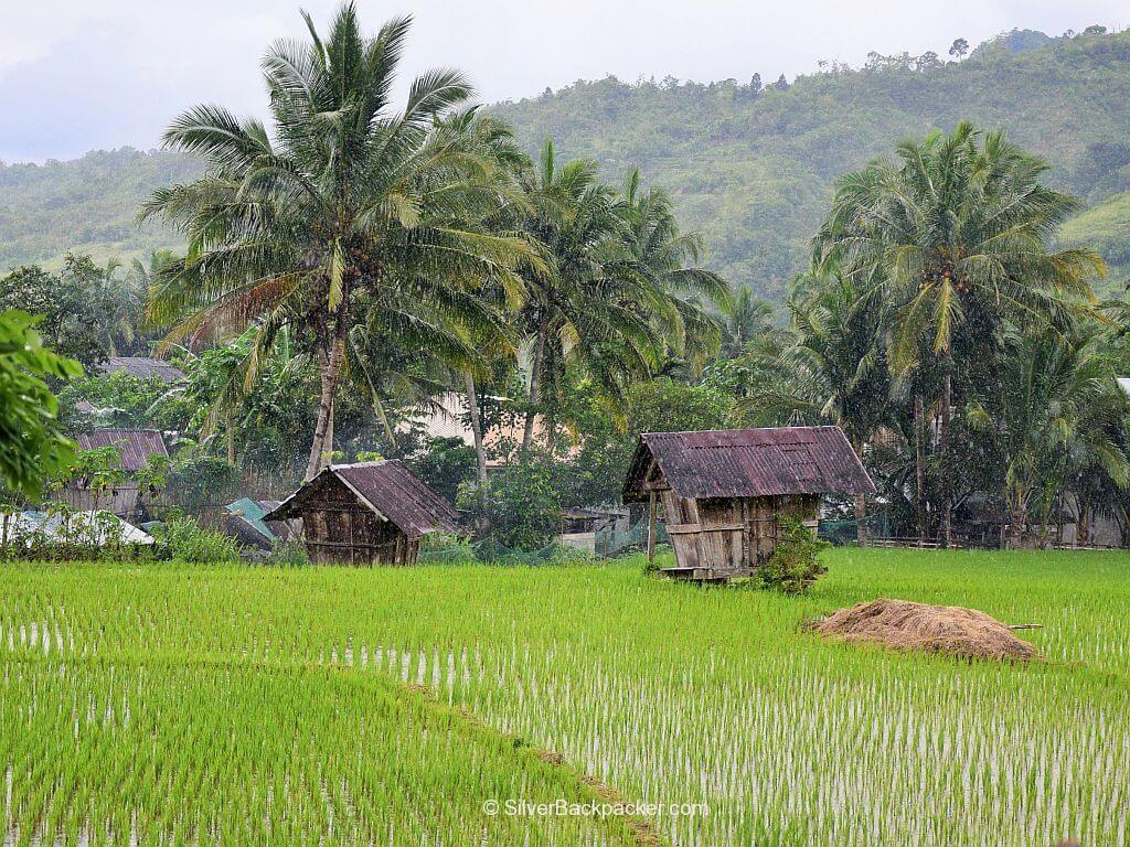 Ricefields, Ableg, Daguioman, Abra