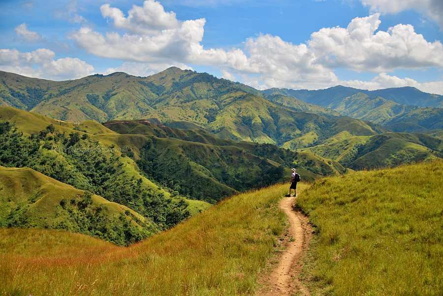 Silverbackpacker hiking Apoa Rolling Hills