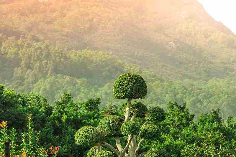 Krabi Landscape in mountains and jungle Thailand