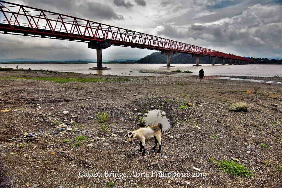 Calaba Bridge, Abra, Philippines and a Goat 2019