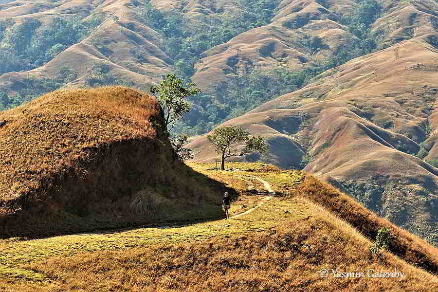 Apao Rolling Hills, Tineg. Photos of Abra 2019