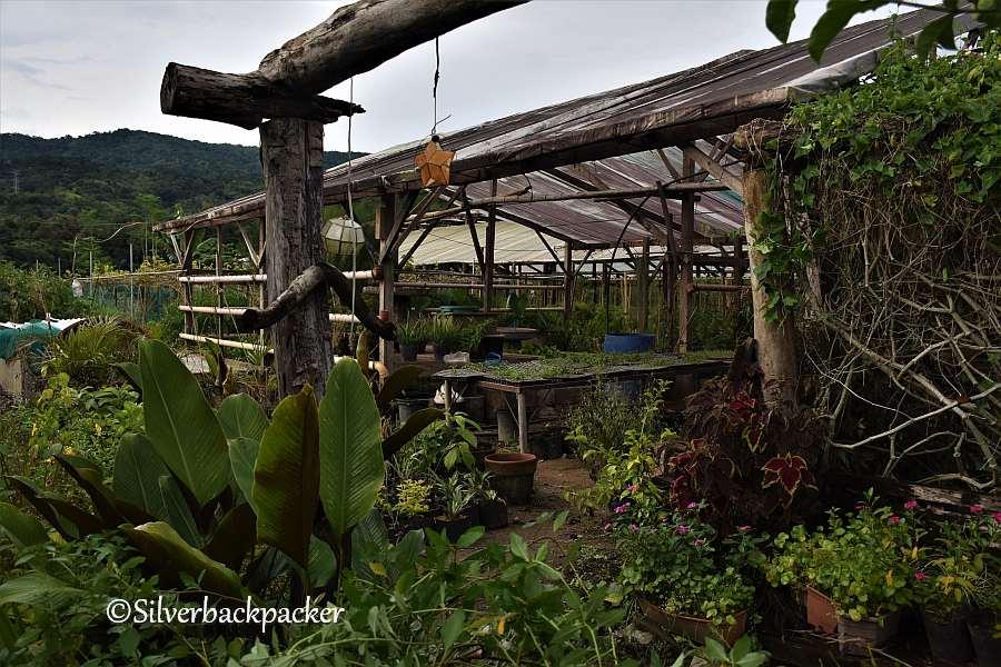 Herrero Farm, Brgy Subagan, Licuan-Baay, Abra