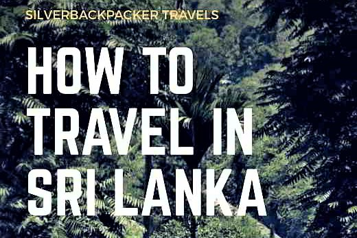 How to Travel Around Sri Lanka
