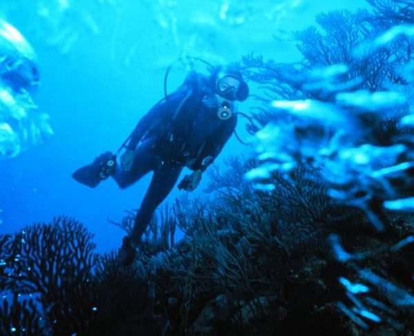 Scuba_diver Photo Courtesy – Scott Sanchez