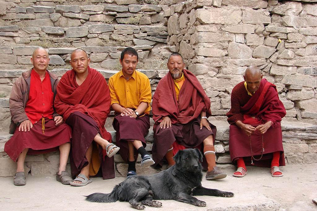 Monks_at_Hemis_Gompa_Ladakh. Photo by Karunakar Rayker
