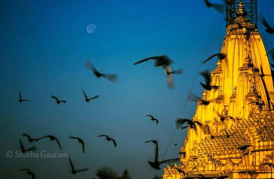 Somnath Temple, Veraval, Gujarat, India. Offbeat India Tour Ideas
