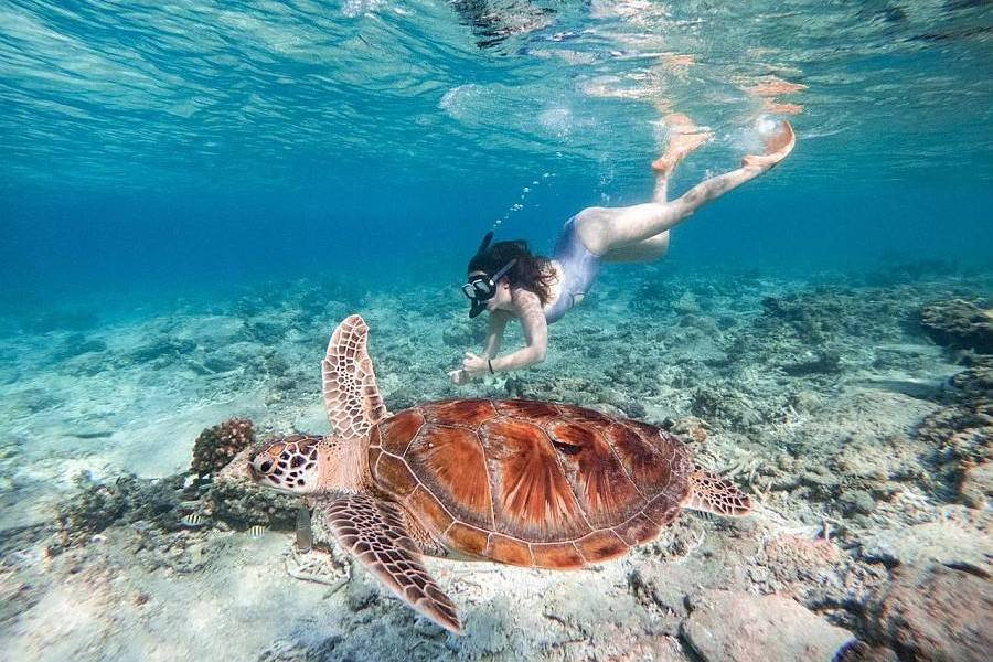 Diving in Bali, Indonesia