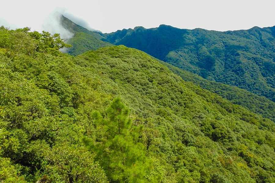 Unusal Sleep in Mount Saramati trek of Nagaland, India
