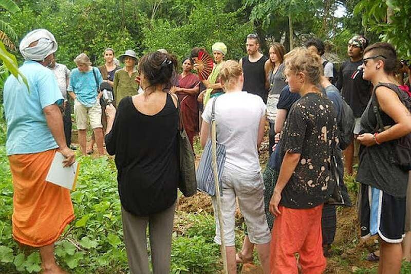 Organic Farming volunteering in Solitude (Auroville)