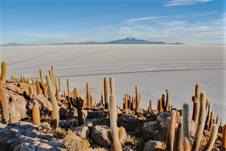 Salt Flats Bolivia - Home to Havana